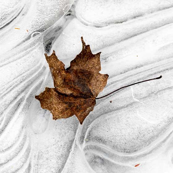 Embracing Winter, Part 1: Logistics